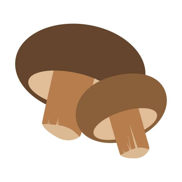 bildbanksillustrationer, clip art samt tecknat material och ikoner med färsk svamp shiitake, isolerade på vit bakgrund. vektorillustration i platt stil. - höst plocka svamp