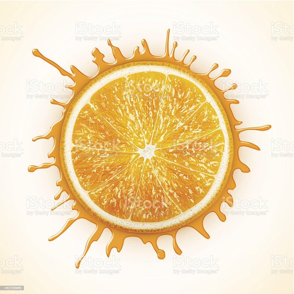 fresh orange with splash royalty-free stock vector art