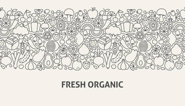 illustrazioni stock, clip art, cartoni animati e icone di tendenza di fresh organic banner concept - aglio cipolla isolated