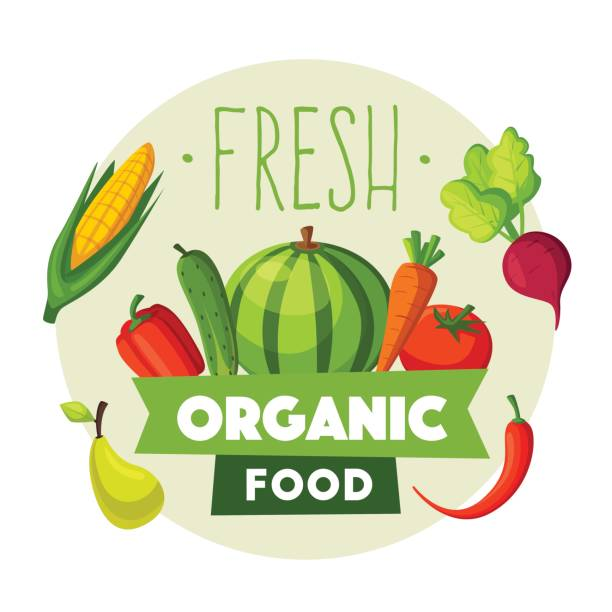Fresh organic food. Eco vegetables and fruits. Cartoon vector illustration. Fresh organic food. Eco vegetables and fruits. Cartoon vector illustration. Farm set. For logo and poster organic farm stock illustrations