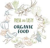 Vector illustration Fresh organic spring summer vegetables frame. Contour design on white background. Vegetarian menu, fruits and vegetables background, vegetableas market flyer