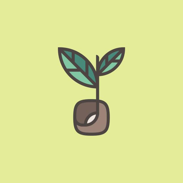 frischer bio-spross. moderne linie logo-markierung schablone mit sprossen-saatgut - zeichensetzung stock-grafiken, -clipart, -cartoons und -symbole