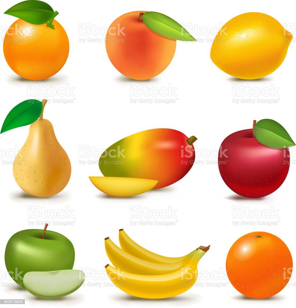 Fresh realistic 3d juicy fruits slice organic vegetarian isolated greengrocery fruity vector illustration vector art illustration