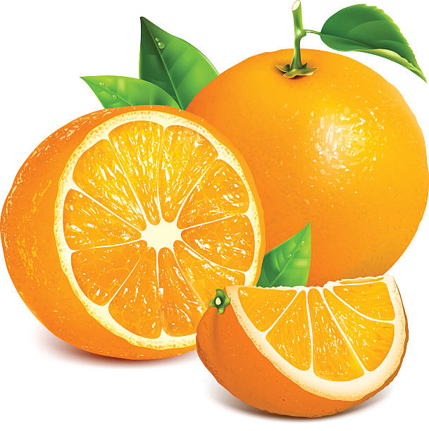 Orange Fruit Vector Royalty Free Or...