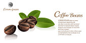 Fresh roasted coffee beans with leaves isolated on white background. vector illustration.