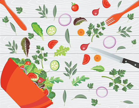 Raw food stock illustrations