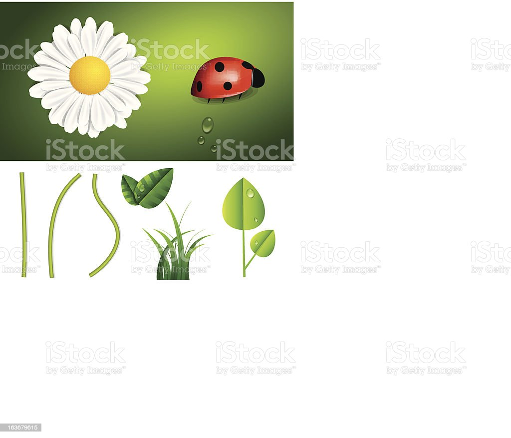 Fresh Spring and Summer Nature Elements royalty-free fresh spring and summer nature elements stock vector art & more images of blossom