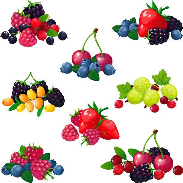 bildbanksillustrationer, clip art samt tecknat material och ikoner med färska sommarbär. högar av hallon vinbär strawberry krusbär blackberry tranbär blåbär tecknade vektor inställd - bär