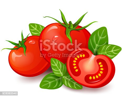 istock Fresh tomatoes with basil on white background 928383540