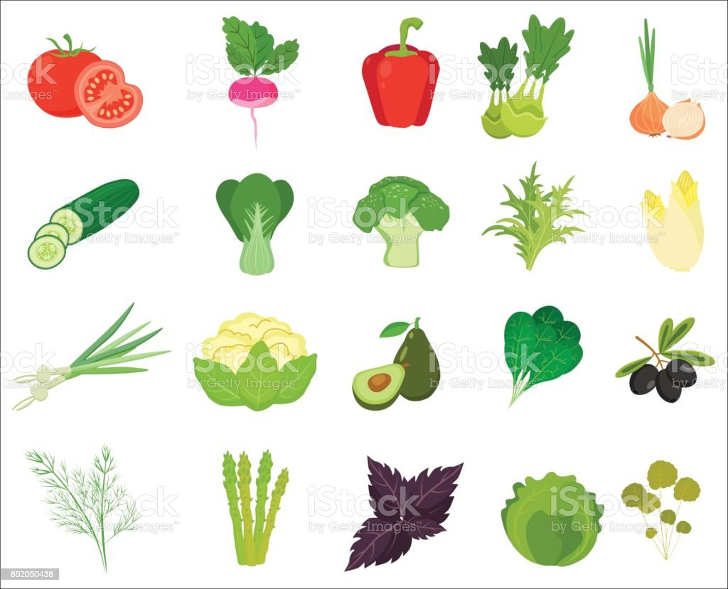 Fresh Vegetables and Herbs color flat icons. vector art illustration