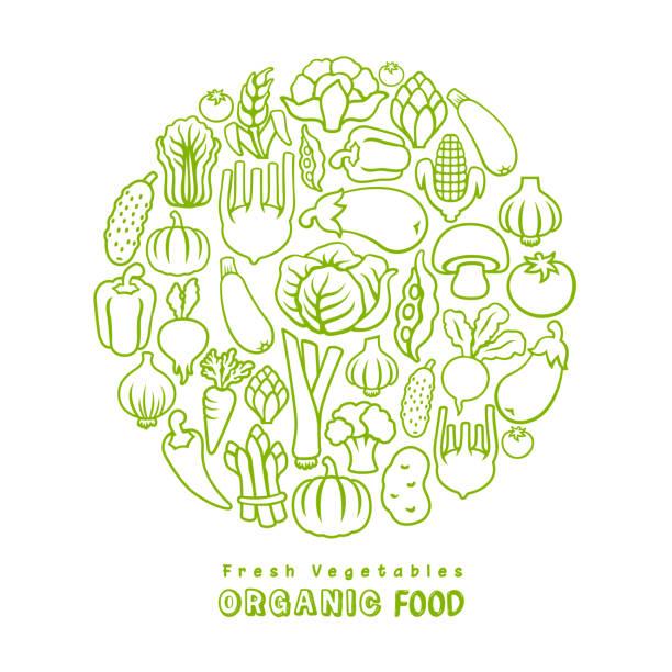 illustrazioni stock, clip art, cartoni animati e icone di tendenza di fresh vegetables. organic food. - organic food