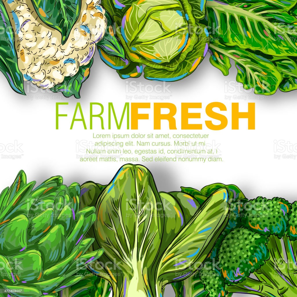 Fresh Vegetables royalty-free fresh vegetables stock vector art & more images of art