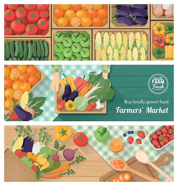 Fresh vegetables Freshly harvested vegetables banner set, farmers market, retail and food preparation at home with vegetables and fruits farmer's market stock illustrations
