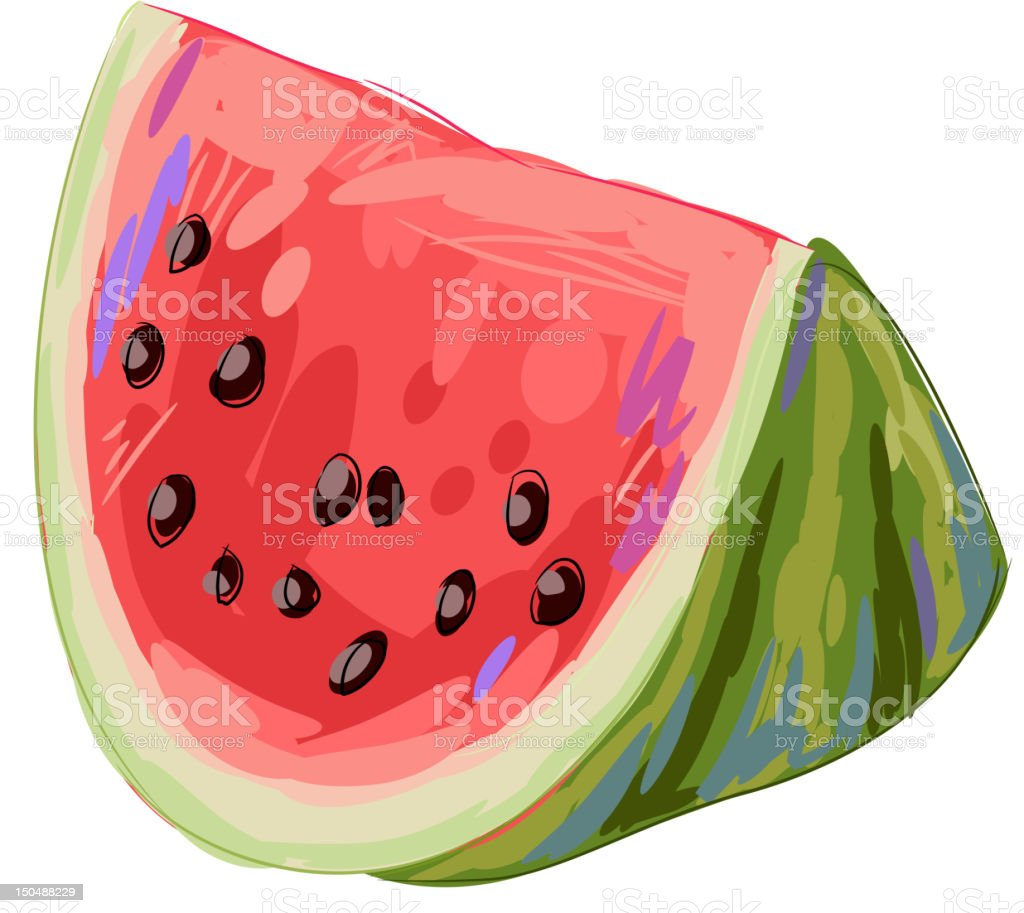 Fresh Water Melon slice isolated on white royalty-free stock vector art