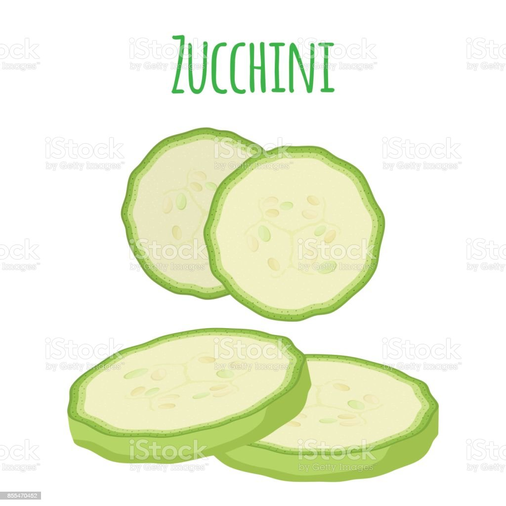 Fresh zucchini squash, vegetarian vegetable. Cartoon flat style. Vector illustration vector art illustration