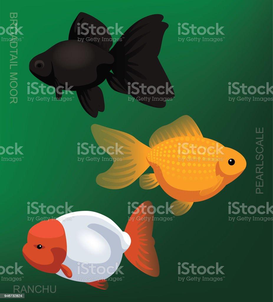 Freshwater Aquarim Pearlscale Goldfish Set Cartoon Vector ...