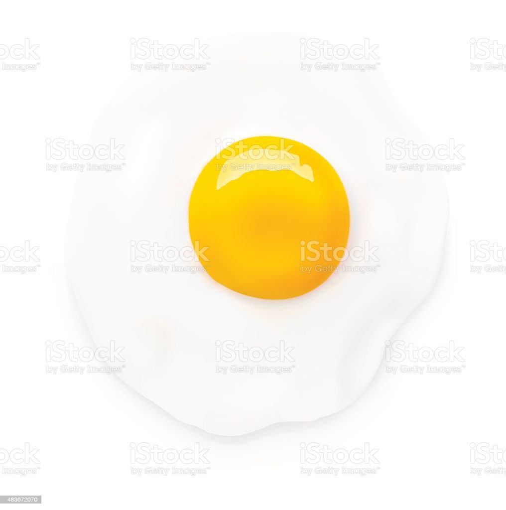 Fried egg isolated on white background. Vector illustration vector art illustration