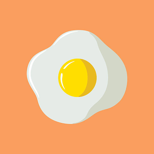Fried Egg vector art illustration