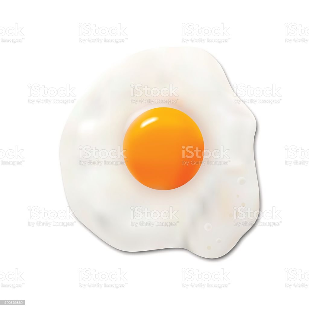Fried egg, vector vector art illustration