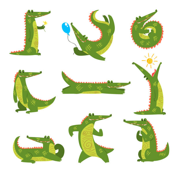friendly crocodile in different poses set, funny predator cartoon character vector illustration on a white background - crocodile stock illustrations