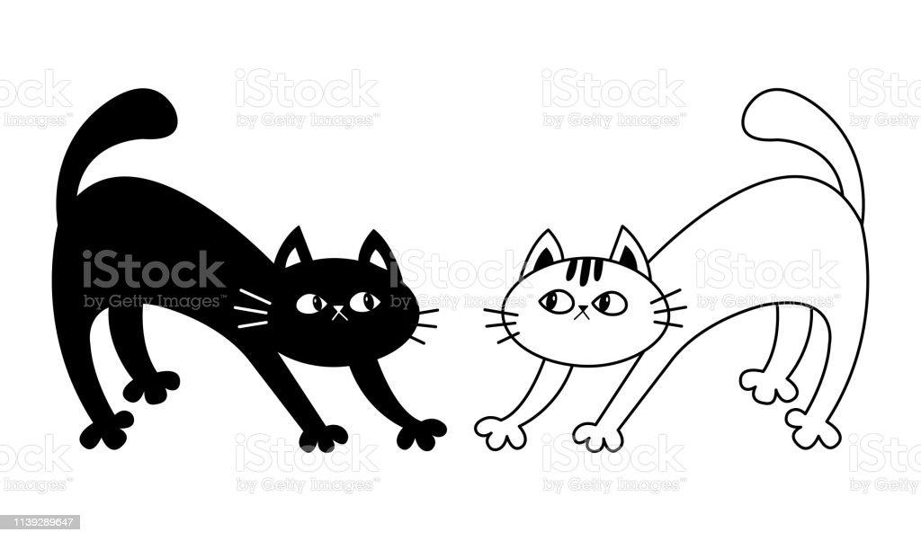 Gratuit chatte noire clips