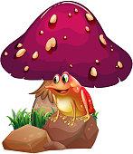frog below the giant mushroom