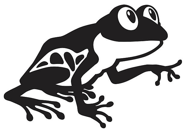 Royalty Free Red Eyed Tree Frog Clip Art, Vector Images ...