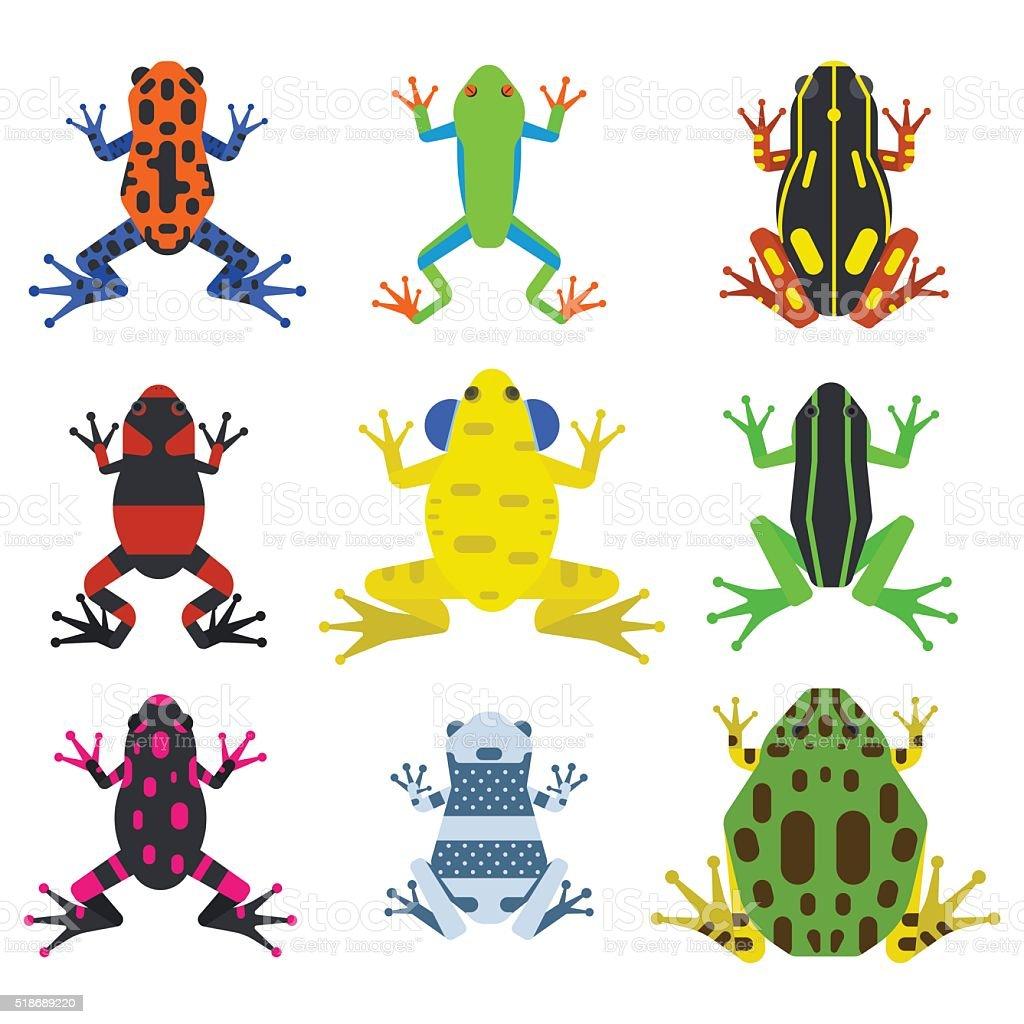Grenouille dessin anim animaux tropicaux et ic nes de nature verte vecteurs libres de droits - Dessin de grenouille verte ...