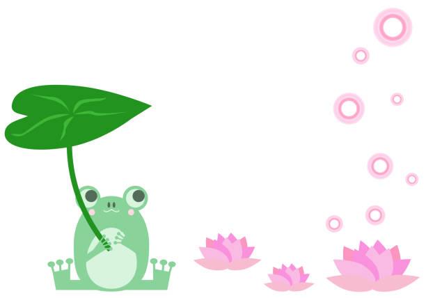 Frog holding a leaf umbrella vector art illustration
