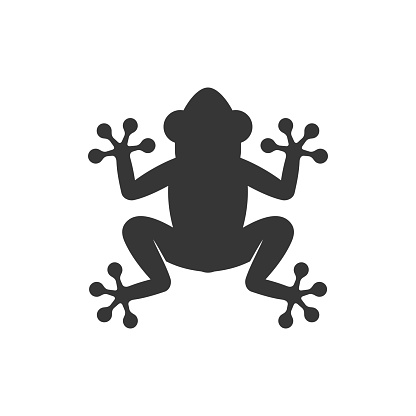 Frog Icon Logo on White Background. Vector