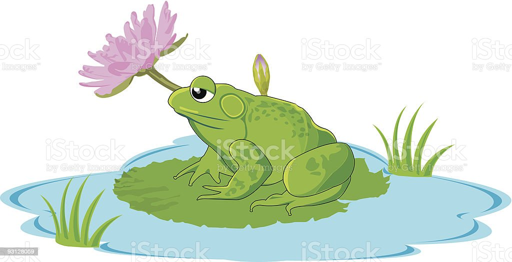 frog in a pond royalty-free frog in a pond stock vector art & more images of amphibian