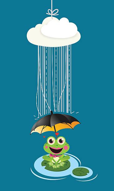Frog in rain with umbrella vector art illustration