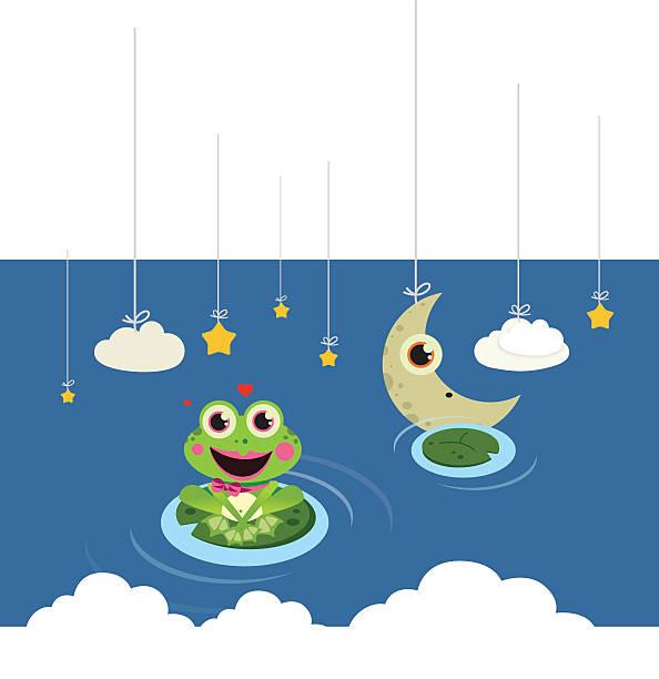 frog in the night vector art illustration