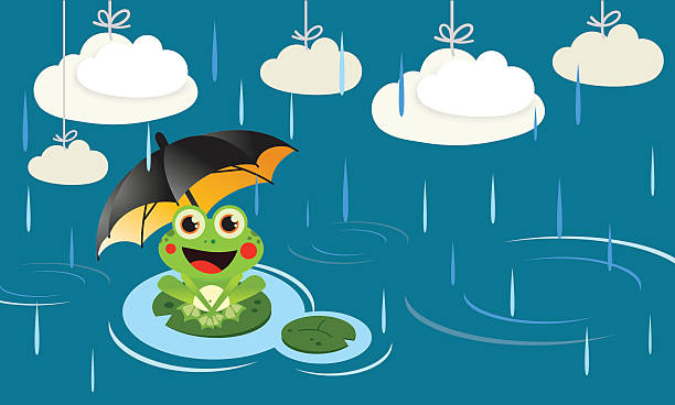 Frog in the rain with umbrella vector art illustration