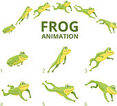 Frog jumping animation. Various keyframes for green animal. Vector frog animation, jump amphibian animated illustration