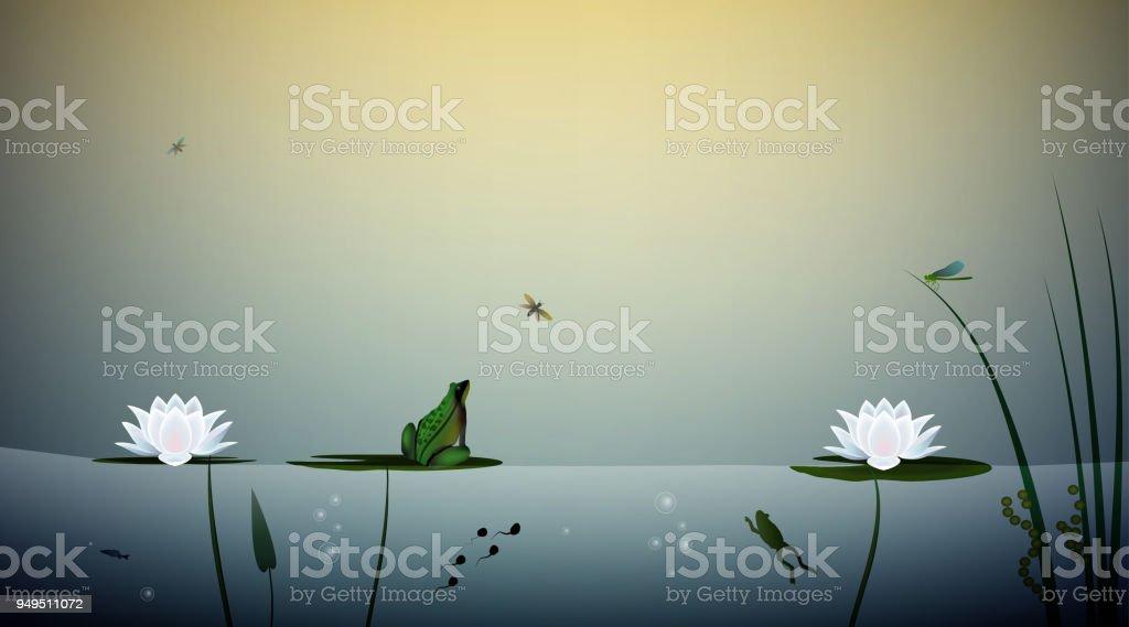 sapo mora na lagoa, a borboleta de caça sapo nas folhas do lírio, cena da lagoa, - ilustração de arte em vetor