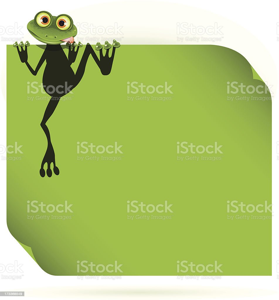 frog on a green leaf royalty-free frog on a green leaf stock vector art & more images of amphibian