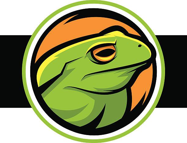Frog vector art illustration