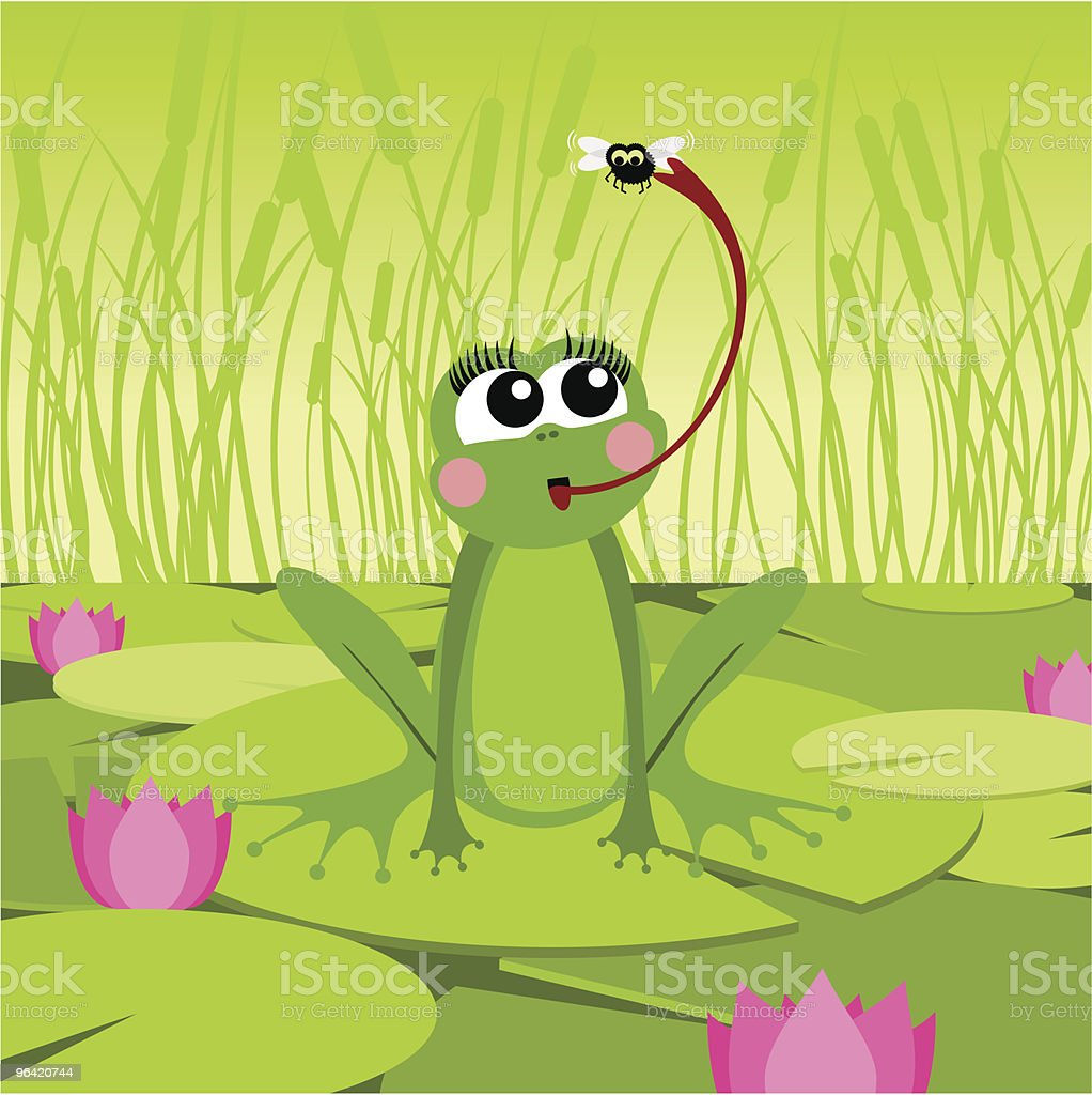 Frog&fly royalty-free frogampfly stock vector art & more images of animal