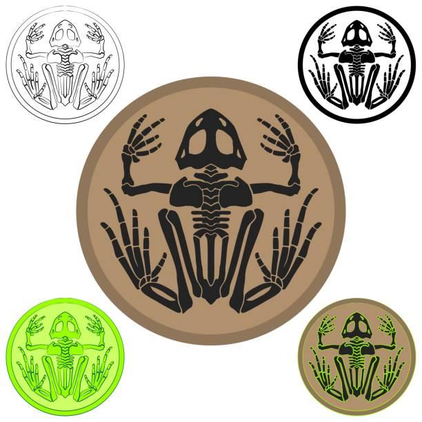 illustrazioni stock, clip art, cartoni animati e icone di tendenza di frogman. seals symbol - frogman