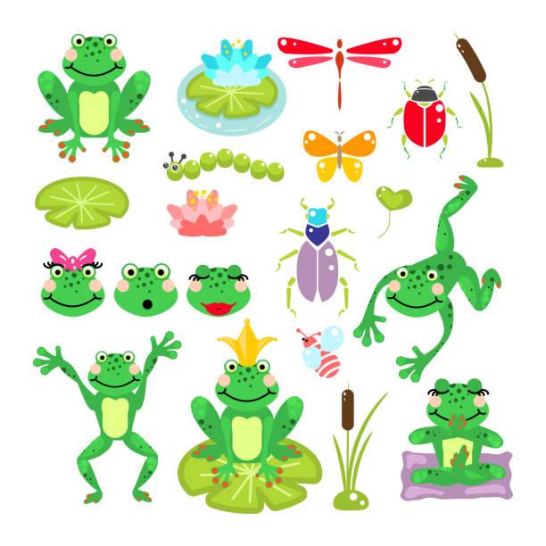 frösche cartoon grüne clipart vektor-set - seerosenteich stock-grafiken, -clipart, -cartoons und -symbole