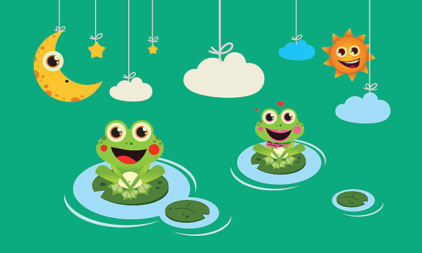 frogs night and day vector art illustration