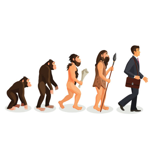 From ape to man standing process isolated. Human evolution – Vektorgrafik