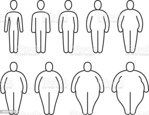From thin to fat body people pictograms different proportions of vector id955988636?b=1&k=6&m=955988636&s=612x612&h=fjrqtpfhy powskiqmj3a qa0covypwnf2izv7cba c=