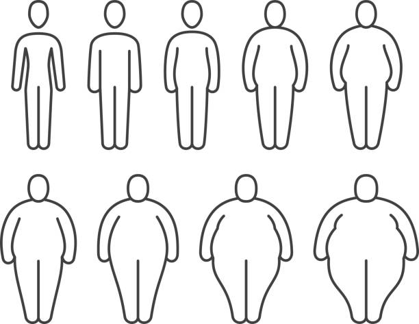 From thin to fat body people pictograms. Different proportions of human bodies. Obese classification vector line icons From thin to fat body people pictograms. Different proportions of human bodies. Obese classification vector line icons. Body human thin to fat transformation, change process illustration the human body stock illustrations