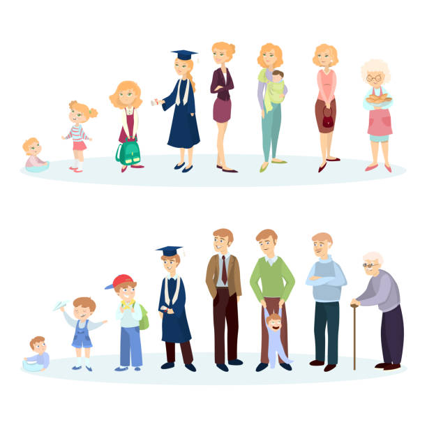 From young to old. vector art illustration