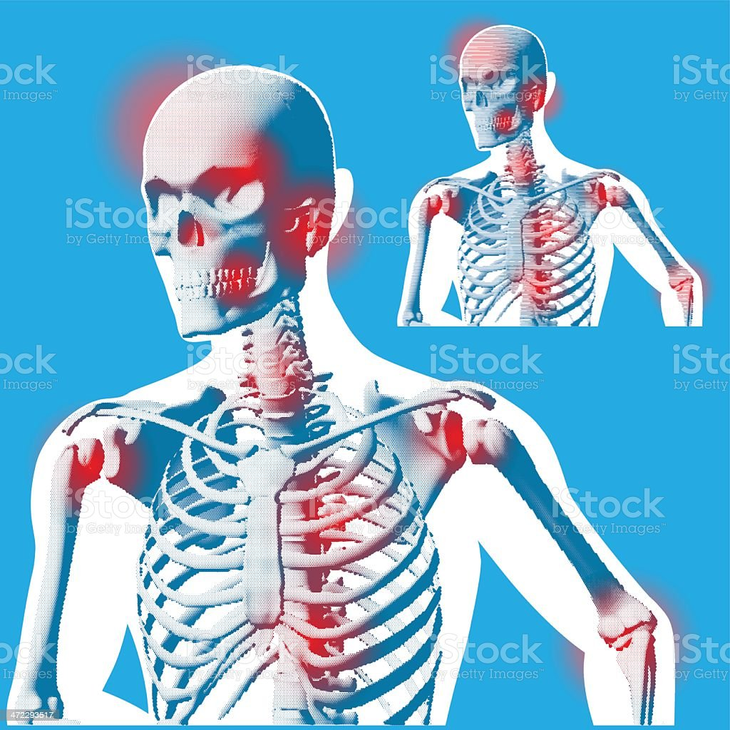 Front Side View Figure Pose - Stylised X-ray royalty-free stock vector art
