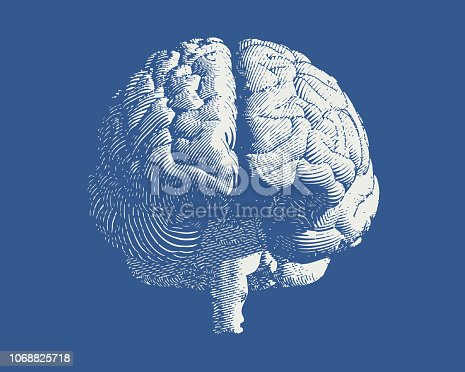 White brain engraving drawing front view isolated on blue background