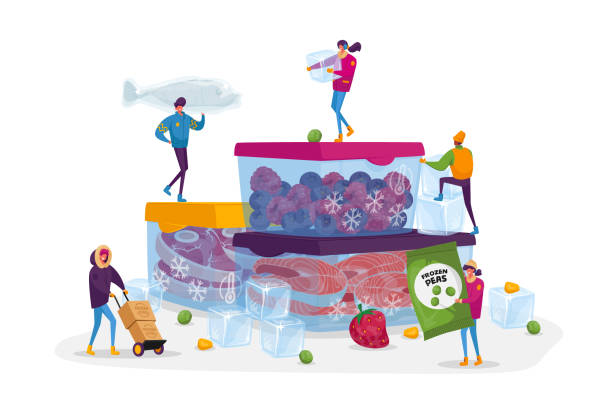 Frozen Food, Healthy Eating, Conservation Concept. Tiny Male and Female Characters Buying and Cooking Natural Iced Products Fresh Vegetables, Fruits Meat and Fish. Cartoon People Vector Illustration Frozen Food, Healthy Eating, Conservation Concept. Tiny Male and Female Characters Buying and Cooking Natural Iced Products Fresh Vegetables, Fruits Meat and Fish. Cartoon People Vector Illustration crucifers stock illustrations