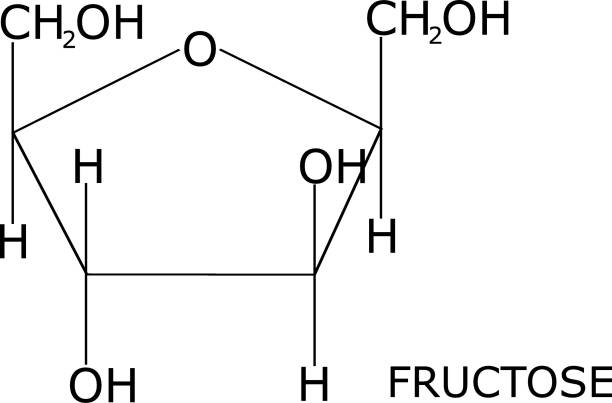 Fructose structural representation, isolated on white background, with its name labeled. Sugar present in fruit Fructose molecule isolated on white background, with its name. Sugar present in fruits carbohydrate biological molecule stock illustrations